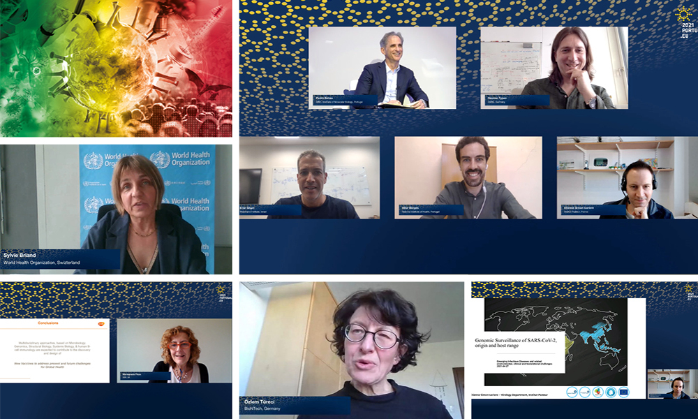 A selection of screenshots featuring participants at the Emerging Infectious Disease conference.
