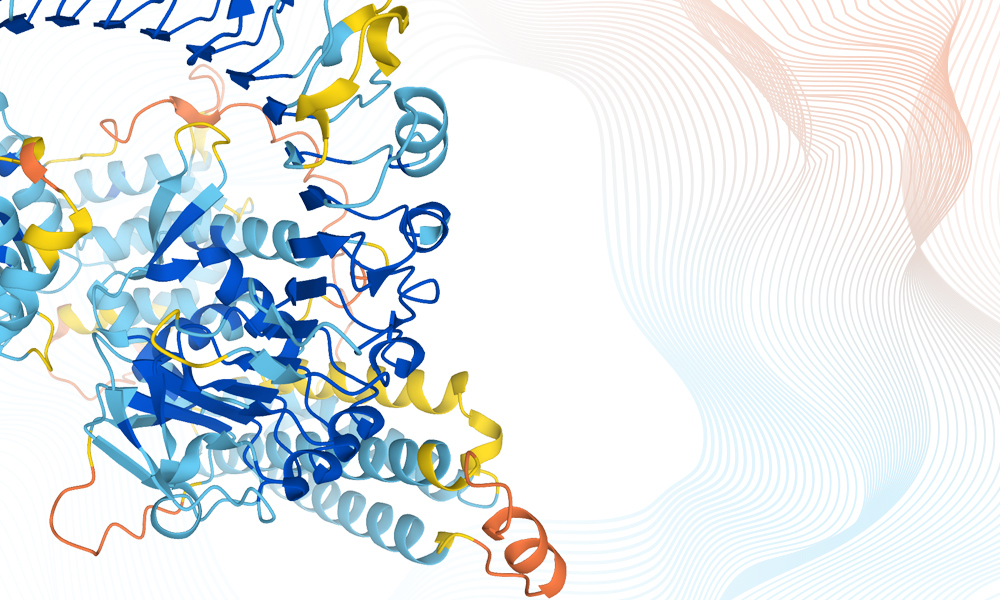 Mouse-ear cress protein structure prediction from AlphaFold database