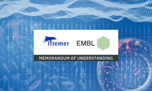 """Logos of Ifremer and EMBL with text: """"memorandum of understanding"""". Illustrations of marine animals and numbers in the background."""